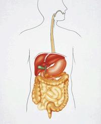 Гастроптоз