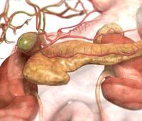 Патогенез желчно-каменной болезни