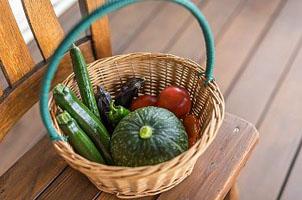 Пищевые продукты и питательные вещества