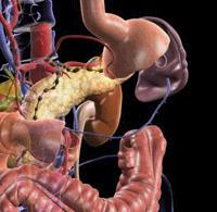 Лечение и профилактика острого аллергического эрозивного гастрита