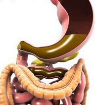 Этиология и патогенез хронического гастрита