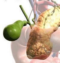 Этиология желчно-каменной болезни