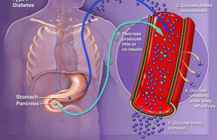 Клиническая картина острого гастрита