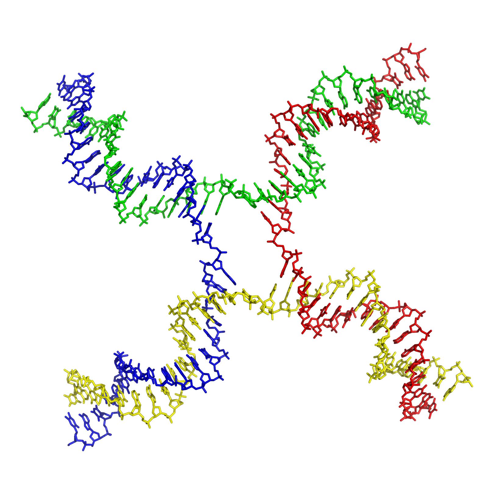 Структура Холлидея