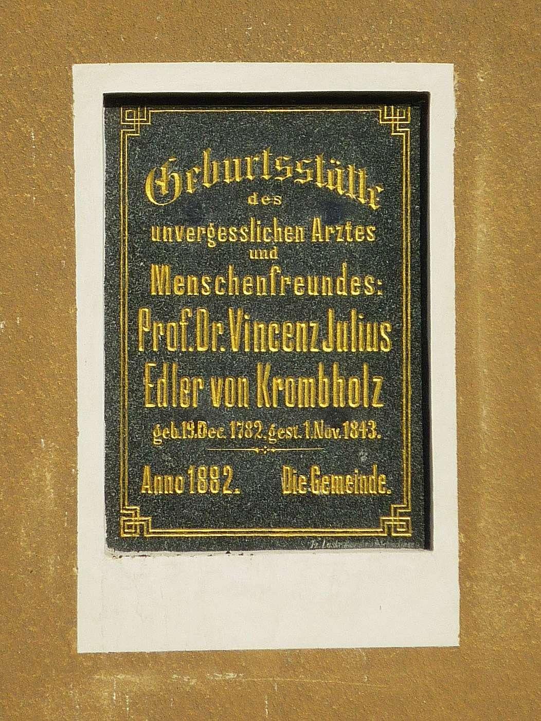 Юлиус Винценц фон Кромбхольц