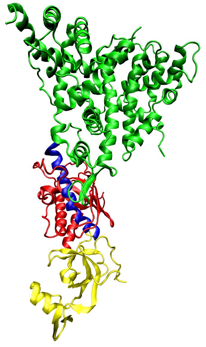 РНК-интерференция