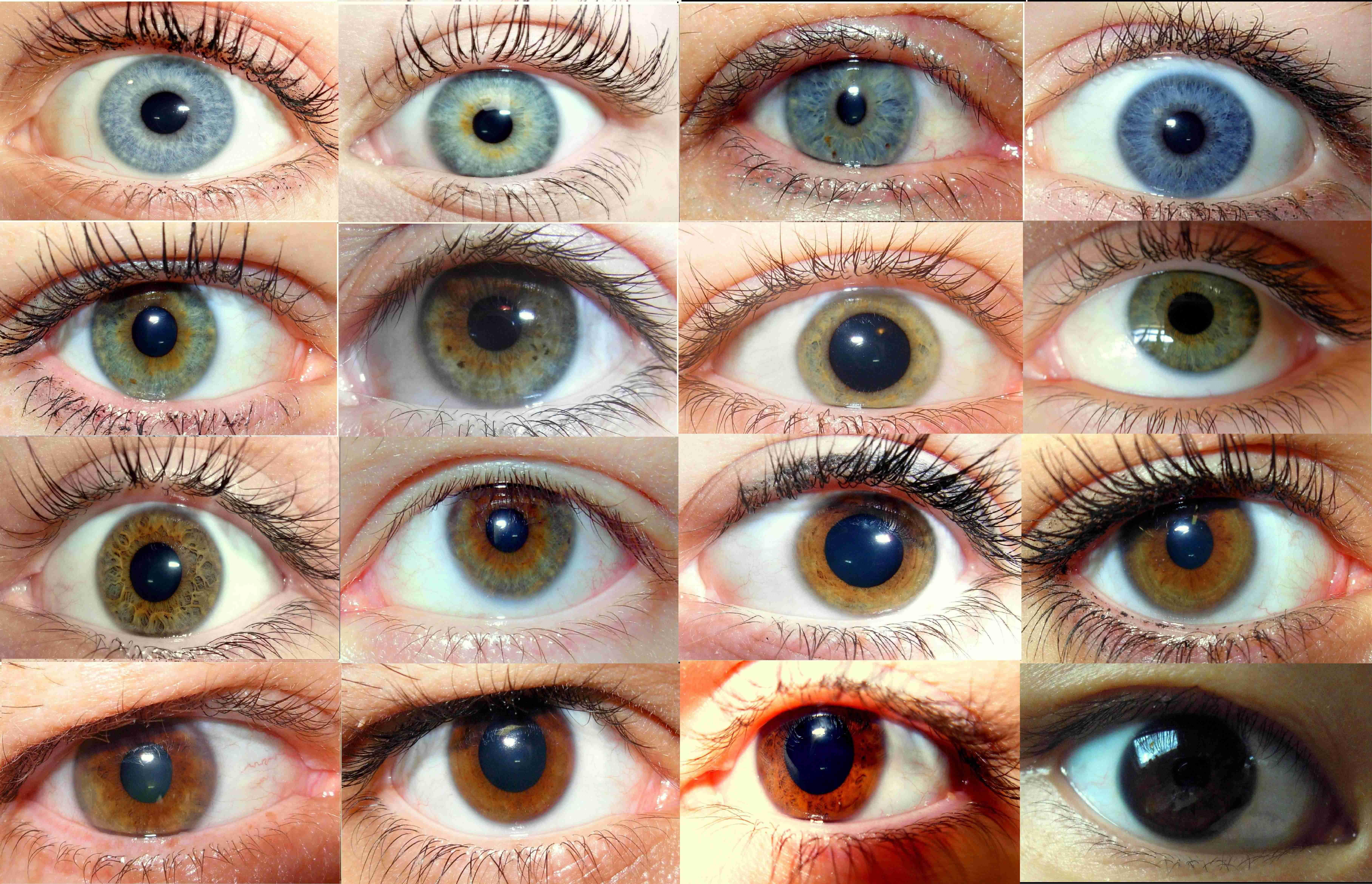Ojos color cafe oscuro
