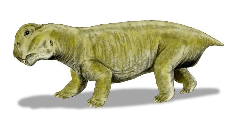 Массовое пермское вымирание