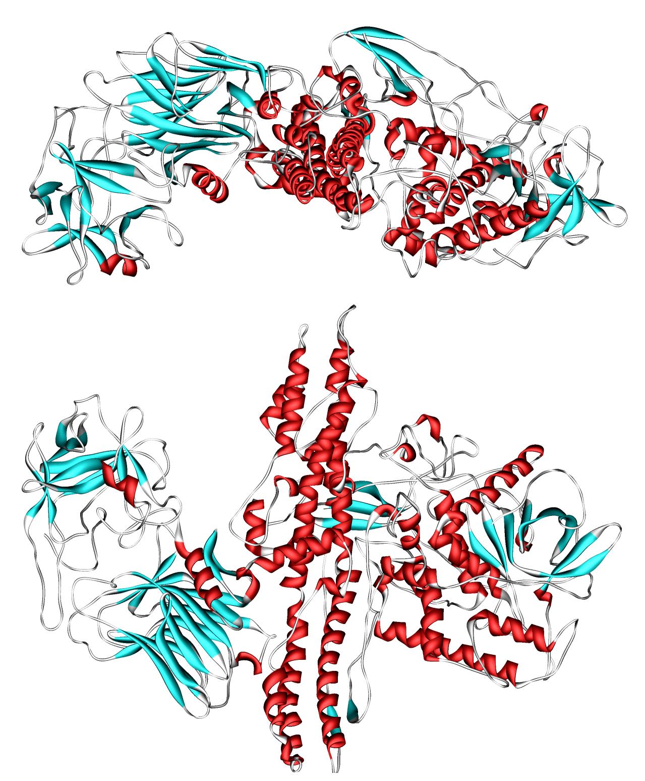Бактериальные токсины