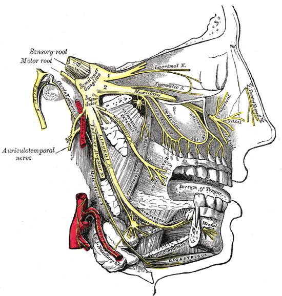 Тройничный узел