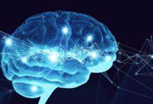 Photo of Неврологические заболевания: симптомы и лечение
