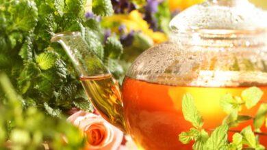 Photo of Травяные чаи для здоровья: как их правильно подобрать?