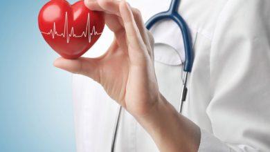 Photo of Какими заболеваниями занимается кардиолог?