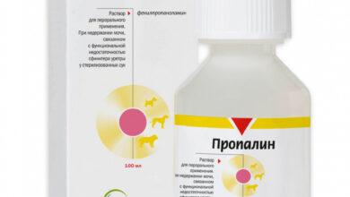 Photo of Инструкция по применению препарата Пропалин